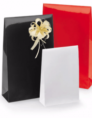 luxe gloss paper gift bags